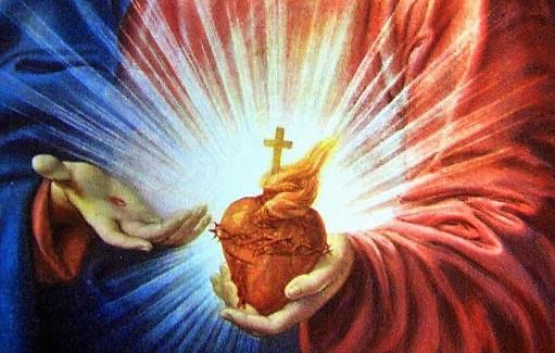 Anatomia cardiaca del miracolo eucaristico