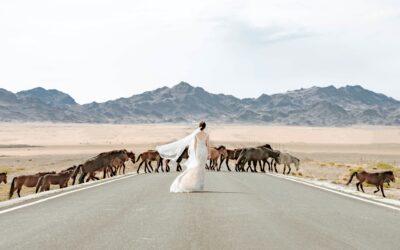 «O tu, che il mio cuore ama»: chi è colei che sale dal deserto?